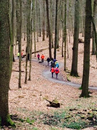 Onze walkers voelen ook reeds de lentekriebels. Met meer dan 20 waren ze zondag om de eerste keer in Groenendaal te vertrekken.